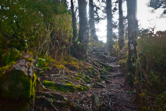 Jade Mountain  Yushan Trail