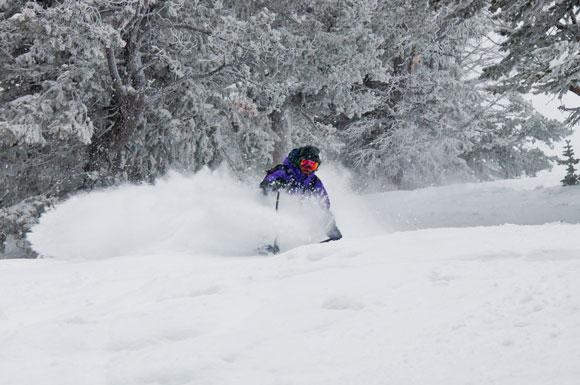 grand targhee skier