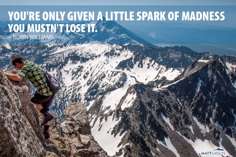 You're only given a little spark of madness. Don't lose it. ~ Robin Williams