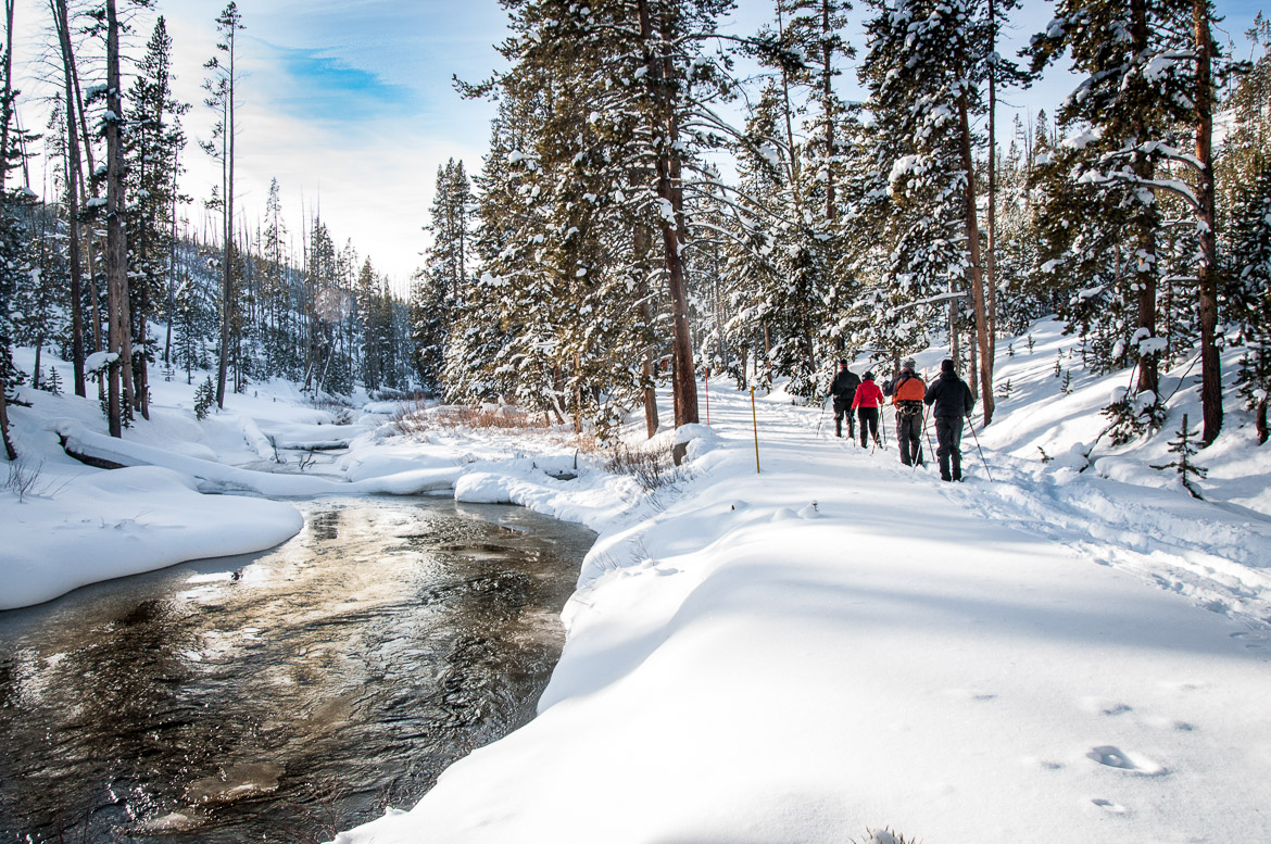 Yellowstone National Park winter x-country skiing